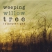 Weeping Willow Tree EP